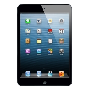 Apple iPad mini 16Gb Wi-Fi Black MD528RS\A