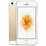 Apple iPhone SE 16 Gb Gold MLXM2RU/A