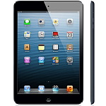 iPad mini Wi-Fi 64 Gb black